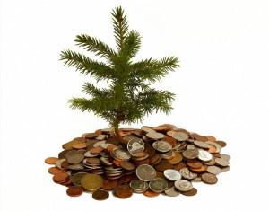 Small-Investment-e1299700920992-300x235